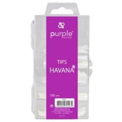 PURPLE Tips HAVANA 100uds P711